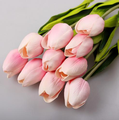 тюльпан светло-розовый