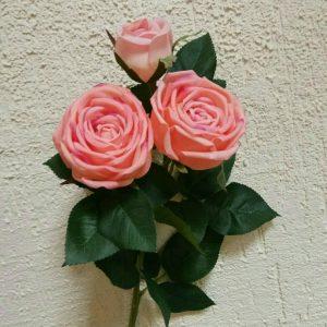 роза пионовидная 2+1 пудровая